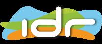 IDR - ayudas y subvenciones a éxito